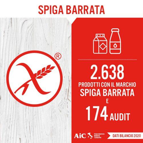 Card AIC 2020_Spiga