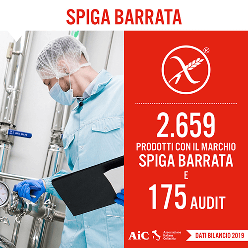 Card_Spiga Barrata